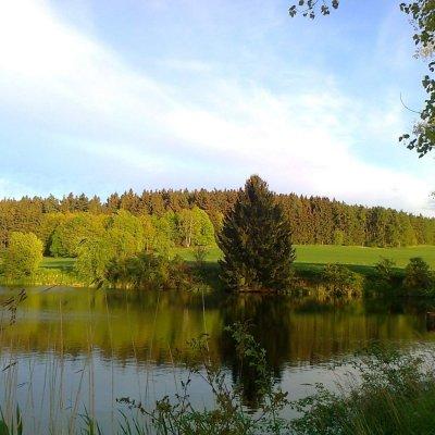 Dražský rybník