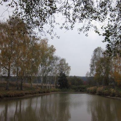 Rybník za Čelákovami (2 km)